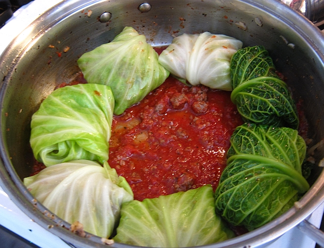 Stuffed savoy and green cabbage leaves